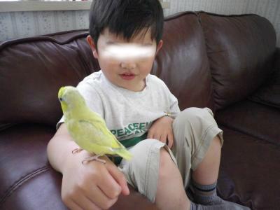 snap_0125juju_20125116478.jpg