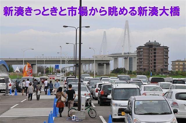 新湊きっときと市場1th (5)