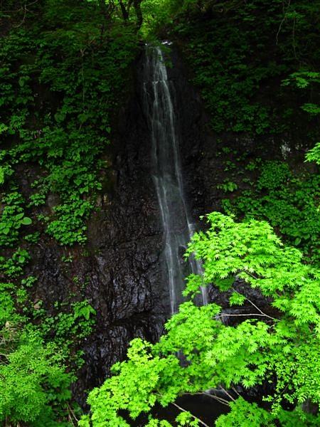 今年初の撮影・布滝