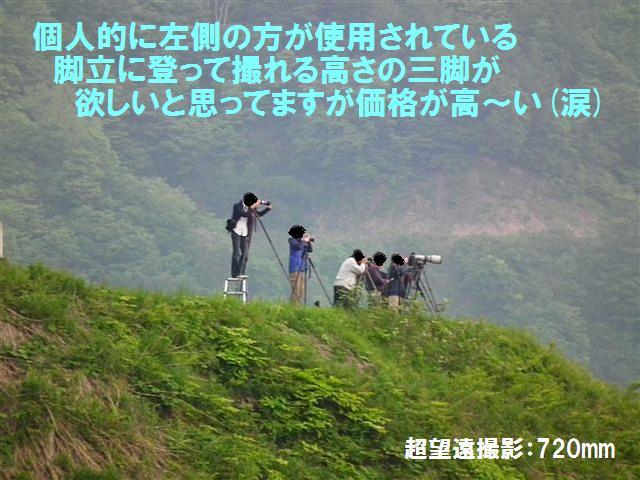 水田散居村撮影カメラマン