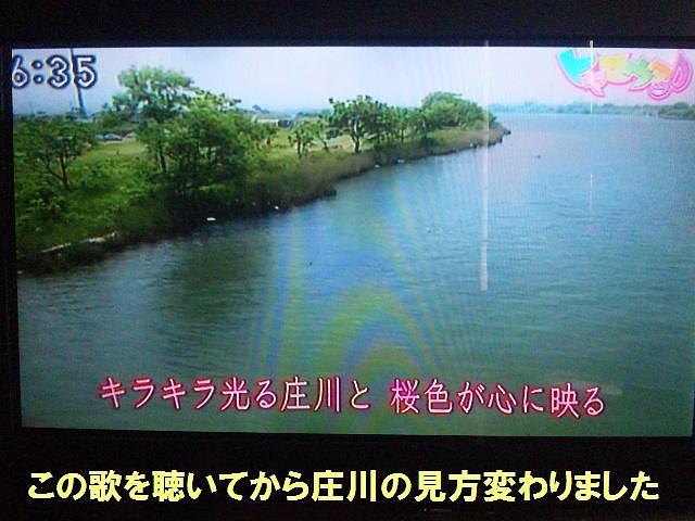トヤマウタ (5)