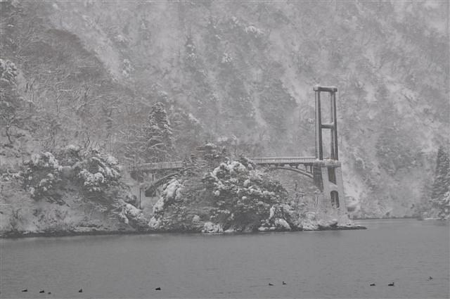 庄川峡 船の旅 (16)