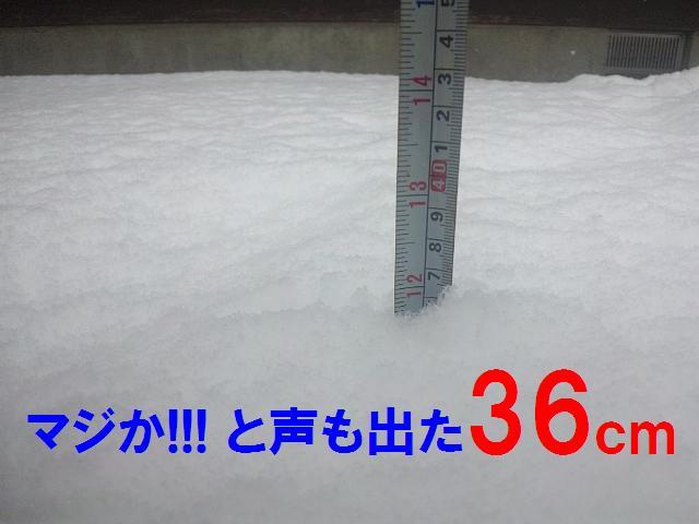 Enjoy Snow (1)