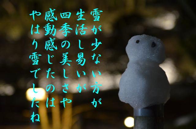 金沢城・兼六園ライトアップ ~冬の段~ (15)