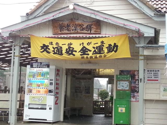 20121215_123245.jpg