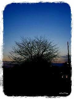2013-02-17-21-00-46_deco.jpg