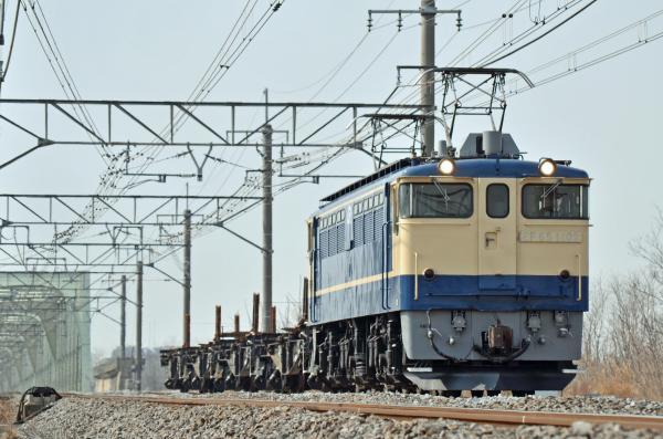 DSC_6466.jpg