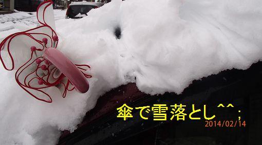 20140214 大雪! 1