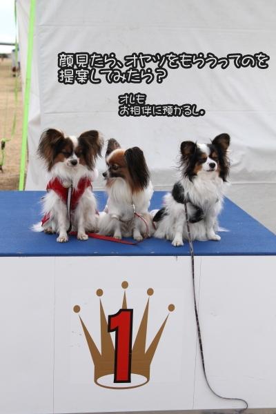 平塚訓練競技会 ブログサイズ0027