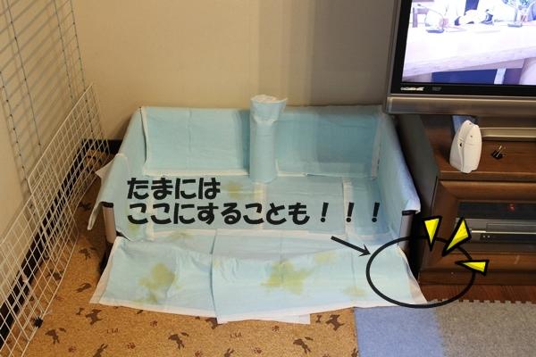 2012_12_30 トイレIMG_7775
