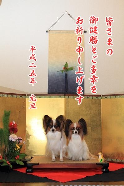 2012_12_29 お正月写真IMG_7744