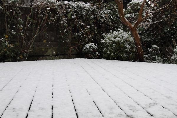 初雪初雪0013