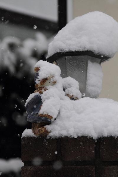 初雪初雪0074