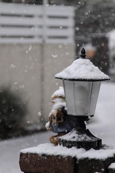 初雪初雪0012