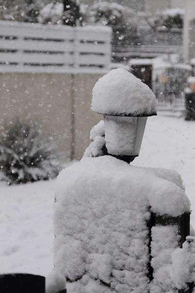 初雪初雪0056