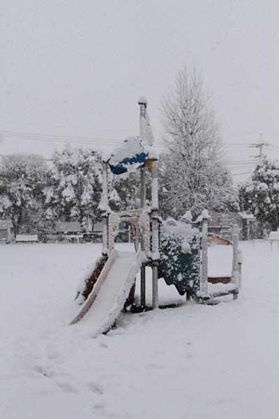 初雪初雪0065