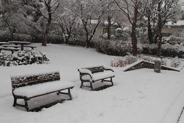 初雪初雪0069