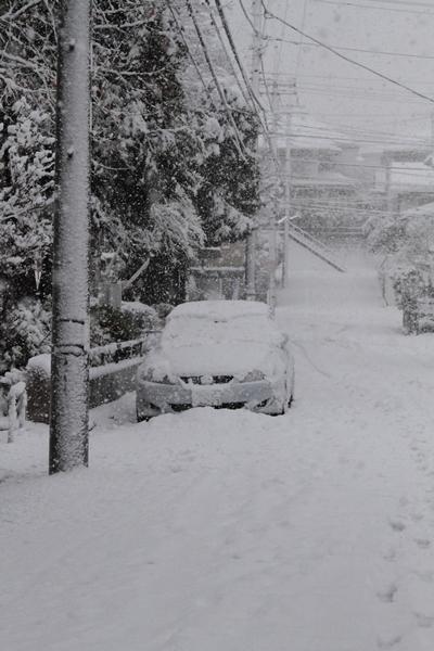 初雪初雪0073