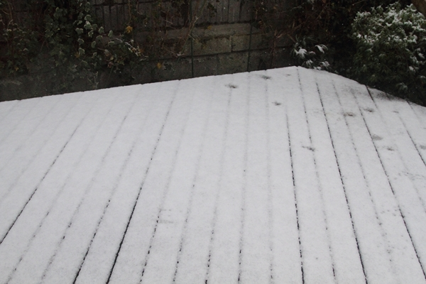 IMG_8169また雪