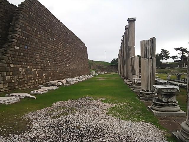 図書館の壁と柱