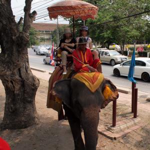 Ayutaya_Elephant_1203-106.jpg