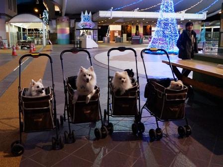 2012.12.19 鬼怒川3