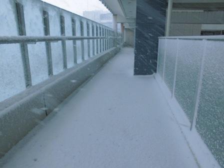 2013.1 雪