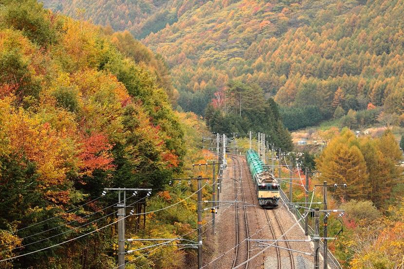 やっぱり鳥居峠の紅葉は最高だぜぃ!