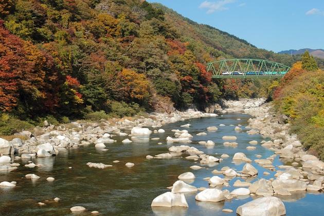 木曽川の流れと紅葉と3084レ