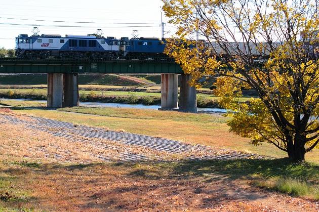 落ち葉舞う晩秋の矢田川にてひとり列車を待つ・・・