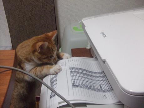 printer+007_convert_20130319003104.jpg