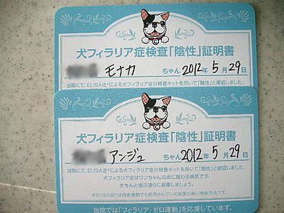 toraiaru6.jpg