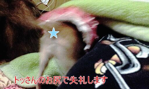 20130313_014634.jpg