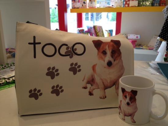 toco1.jpg