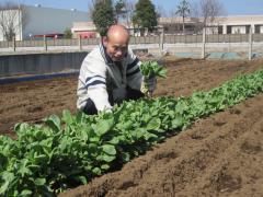 農作業風景3