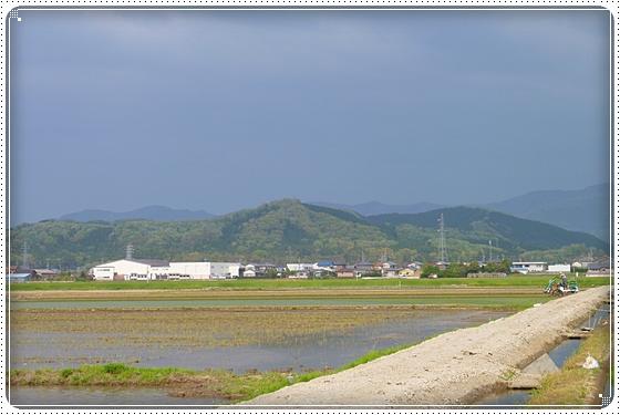 2012,5,1お庭遊び1