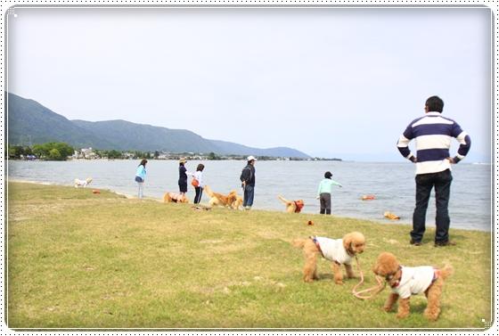 2012,5,13琵琶湖2