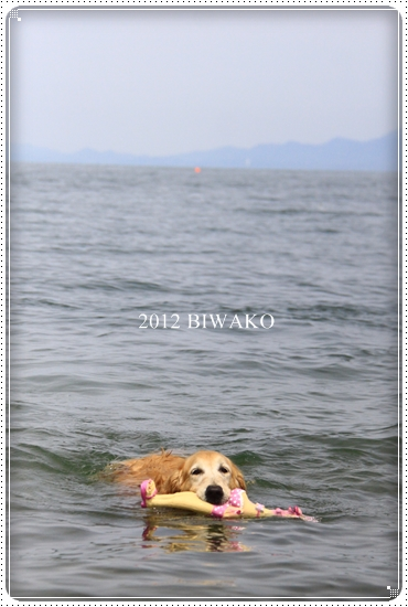 2012,5,13琵琶湖1
