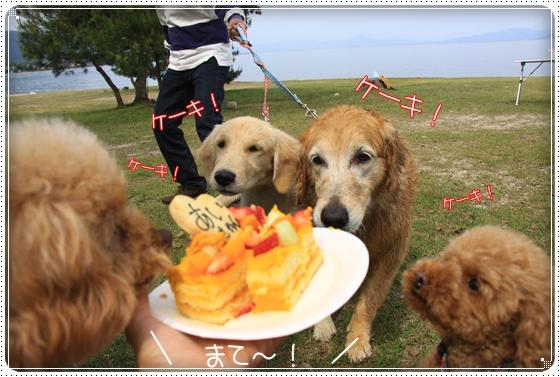 2012,5,15琵琶湖11