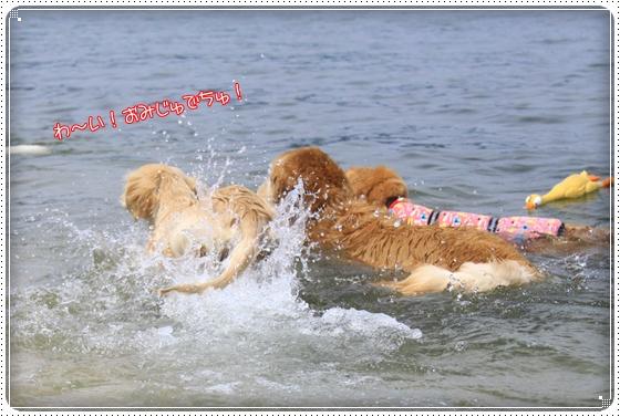 2012,5,16琵琶湖1
