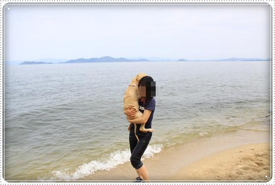 2012,5,16琵琶湖11