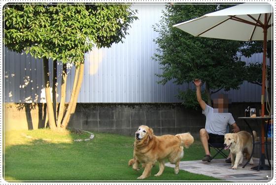 2012,8,5お庭遊び9