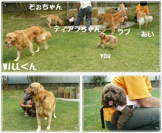 2012,8,11お里帰り3