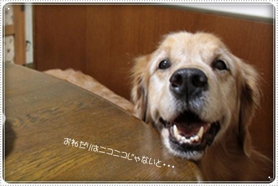 2012,8,13おねだり4