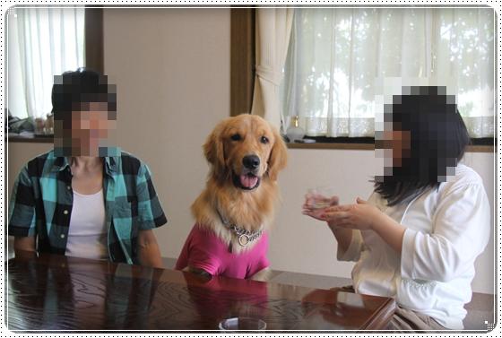 2012,8,16お庭遊び5