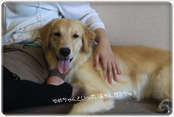2012,8,16お庭遊び9