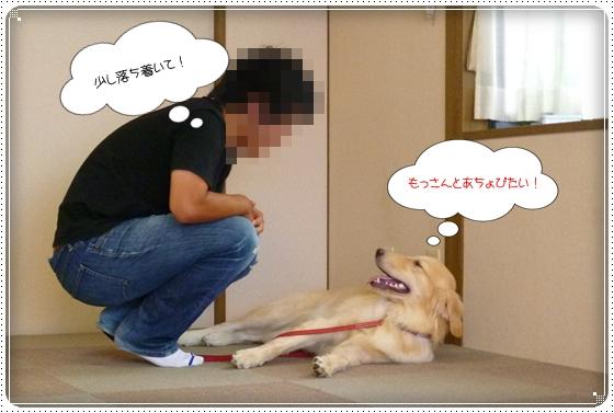 2012,8,28お庭遊び11