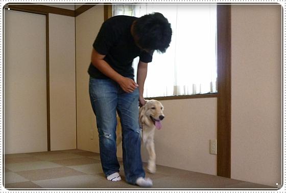 2012,8,28お庭遊び10