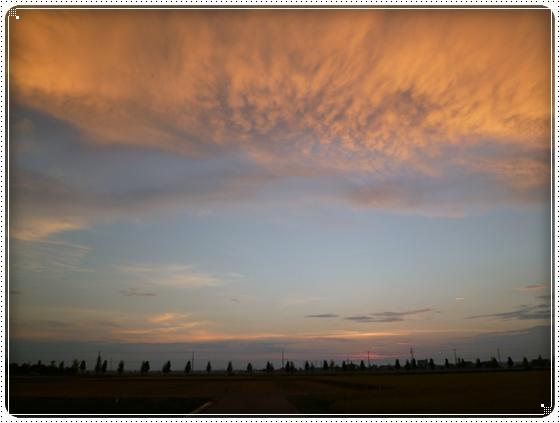 2012,8,30お庭遊び11