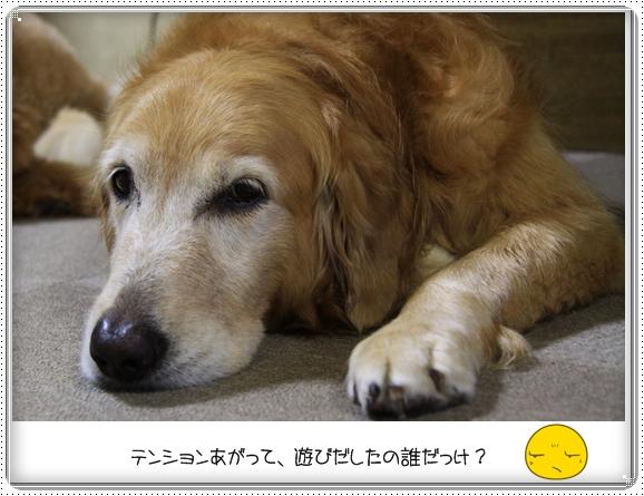 2012,9,6ねむい・・4